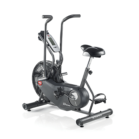 Schwinn Airdyne AD6 Indoor Exercise Bike 